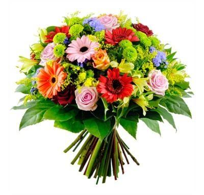 Regala flores al forer@ de arriba                 - Página 2 Myegoo_gerberasconrosas_o